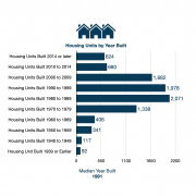Roma, Texas RTA - Housing by Year Built